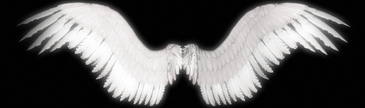 New Angel Wings by shadavar-stock on DeviantArt